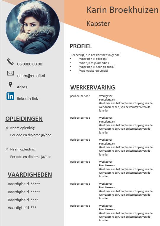 Vaak Gratis CV template #XO96